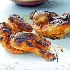 Marocká kuřátka
