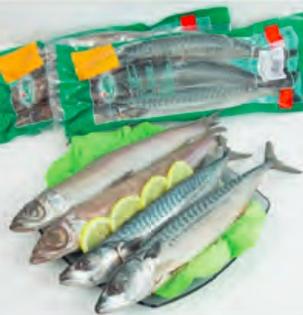 Makrela pečená v troubě