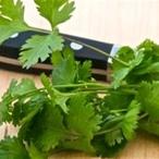 Bramborový salát s čerstvým koriandrem