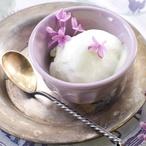 Zmrzlina s levandulí