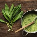 Bylinková polévka I